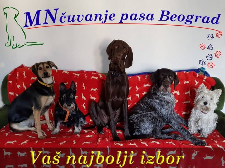 cuvanje pasa, pansion za se ,hotel za pse(1)