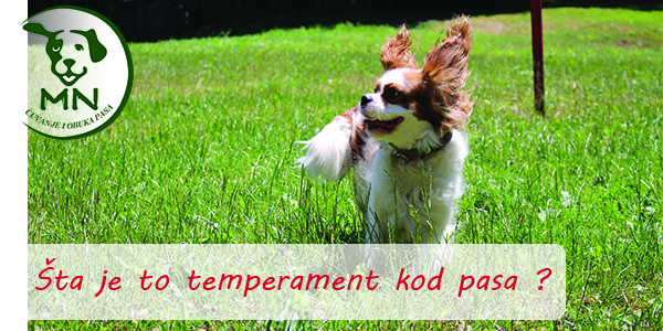 Temperament kod pasa